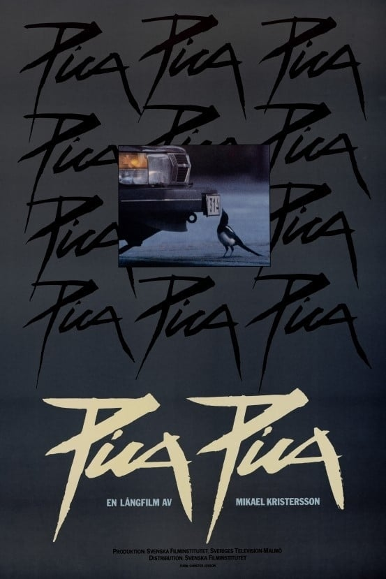 Ver Pica Pica Online HD Español (1987)