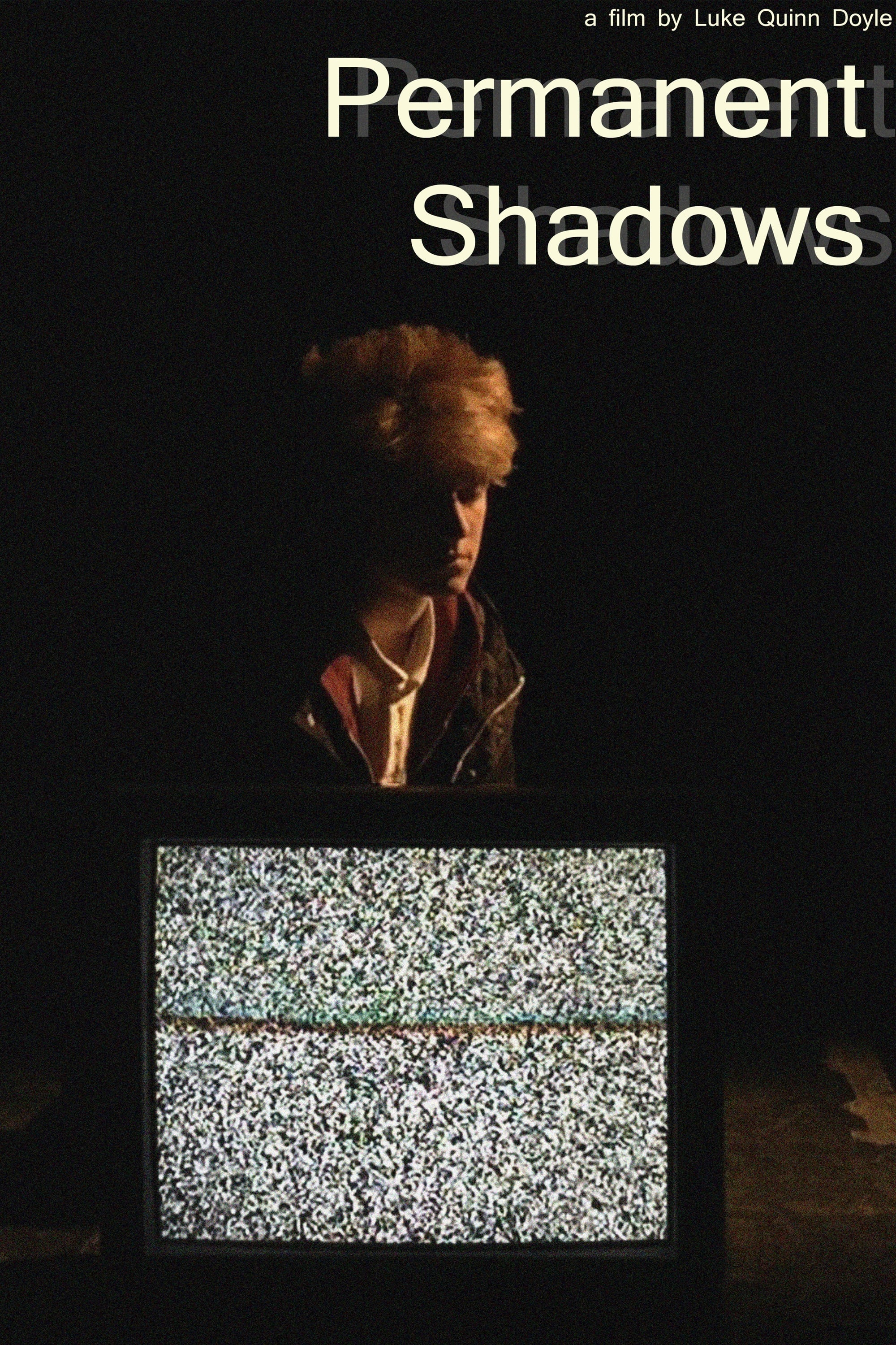 Permanent Shadows (2017)