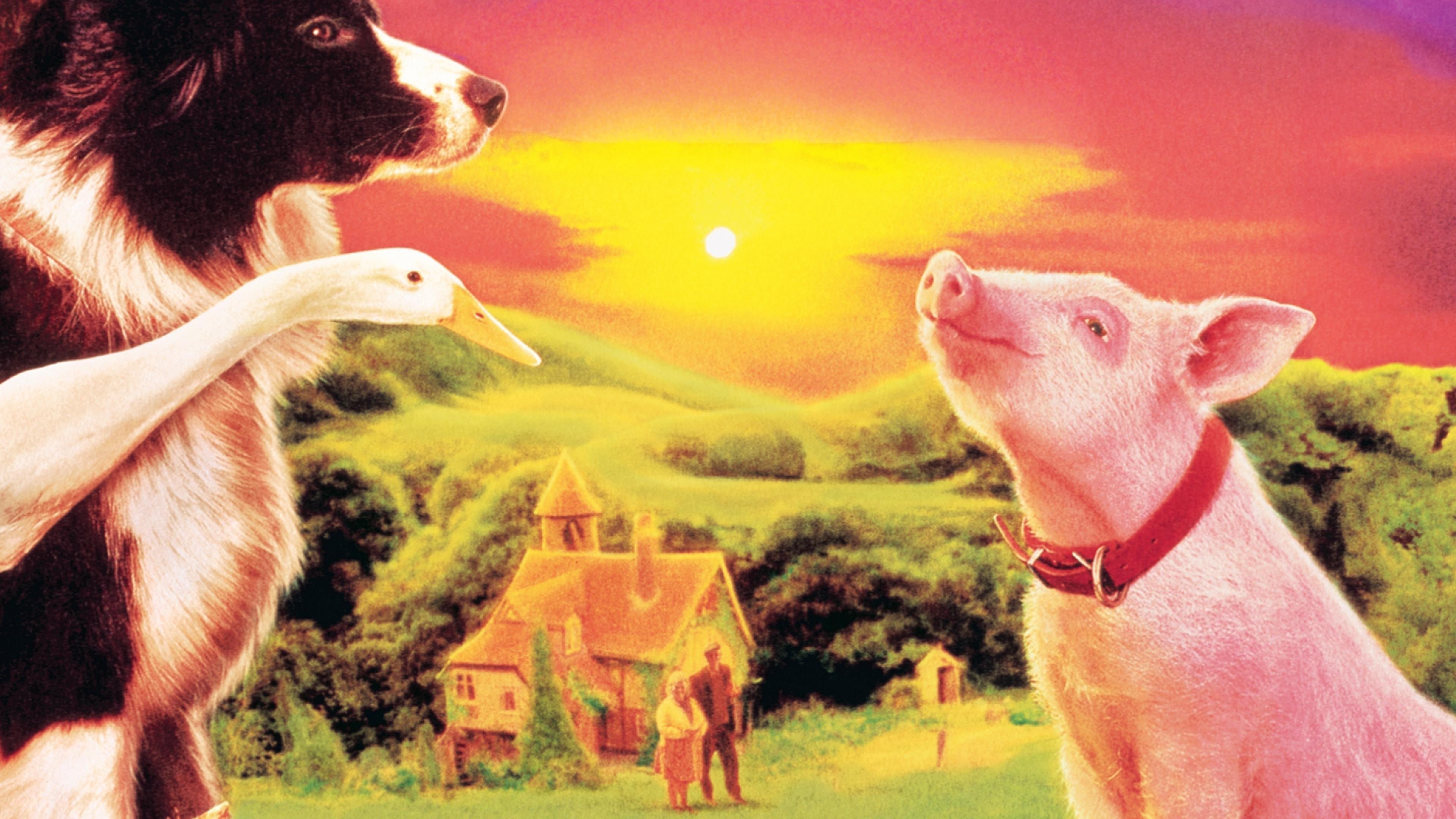 Baixar Babe – O Porquinho Atrapalhado Torrent (1995) Dublado / Dual Áudio 5.1 BluRay 720p | 1080p Download