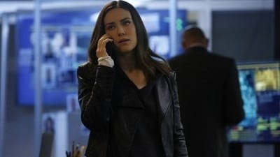The Blacklist Season 6 :Episode 21  Anna McMahon