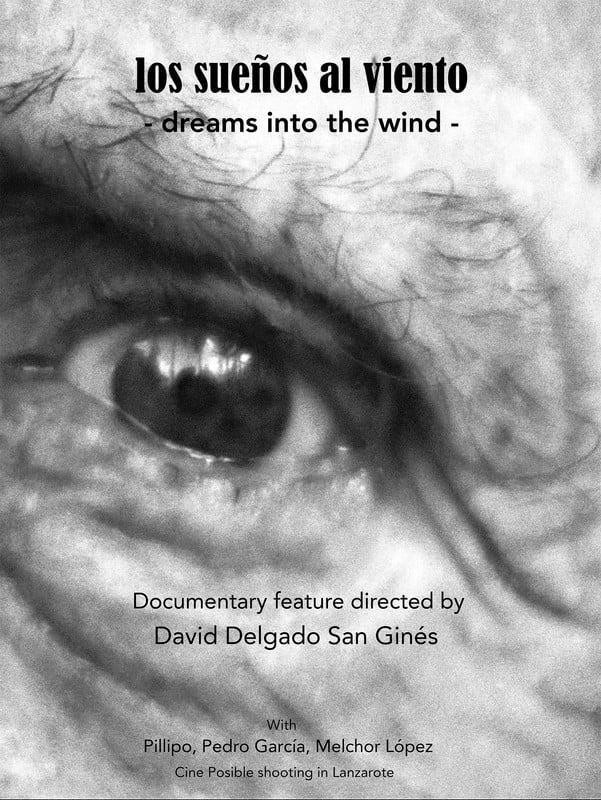 Ver Dreams into the wind Online HD Español ()