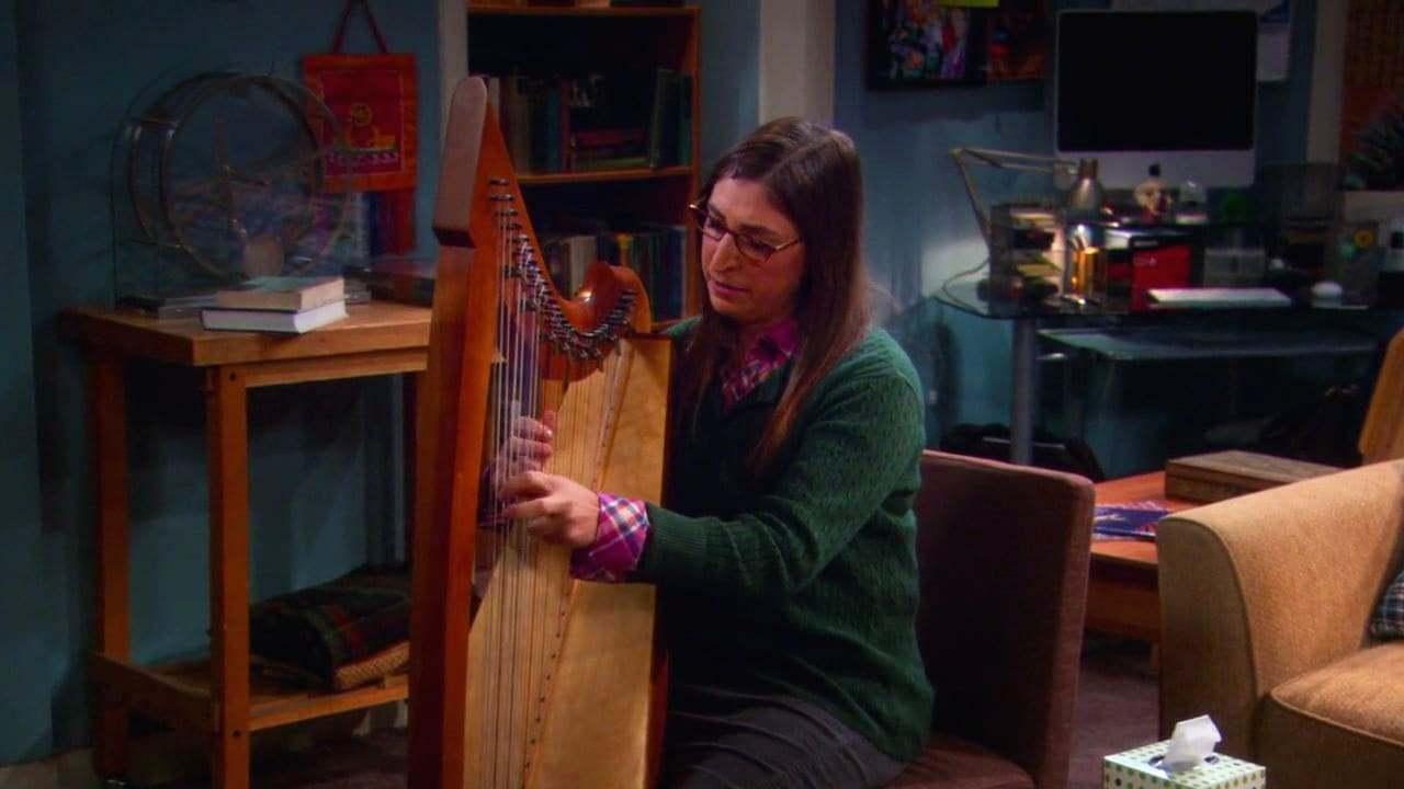 The Big Bang Theory Season 5 :Episode 8  The Isolation Permutation