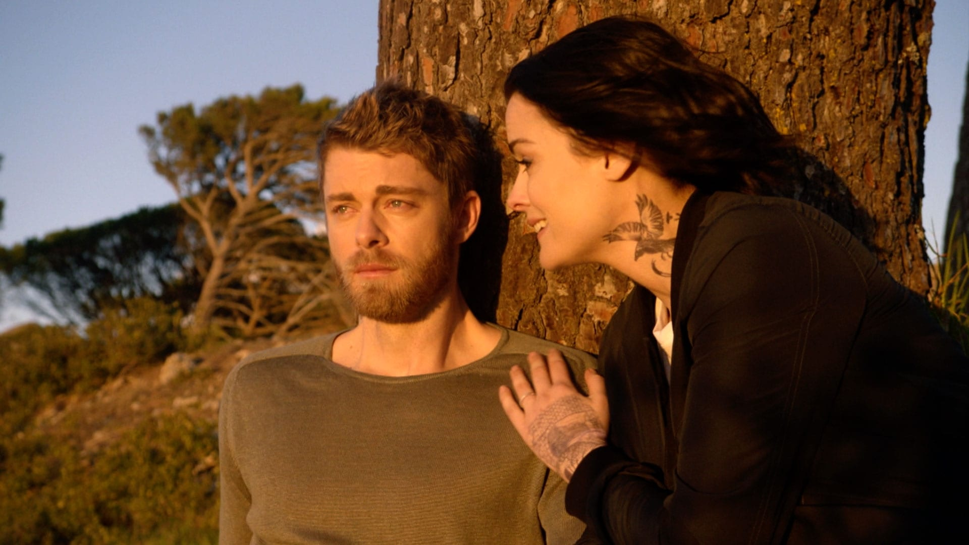 Blindspot Season 3 :Episode 22  In Memory