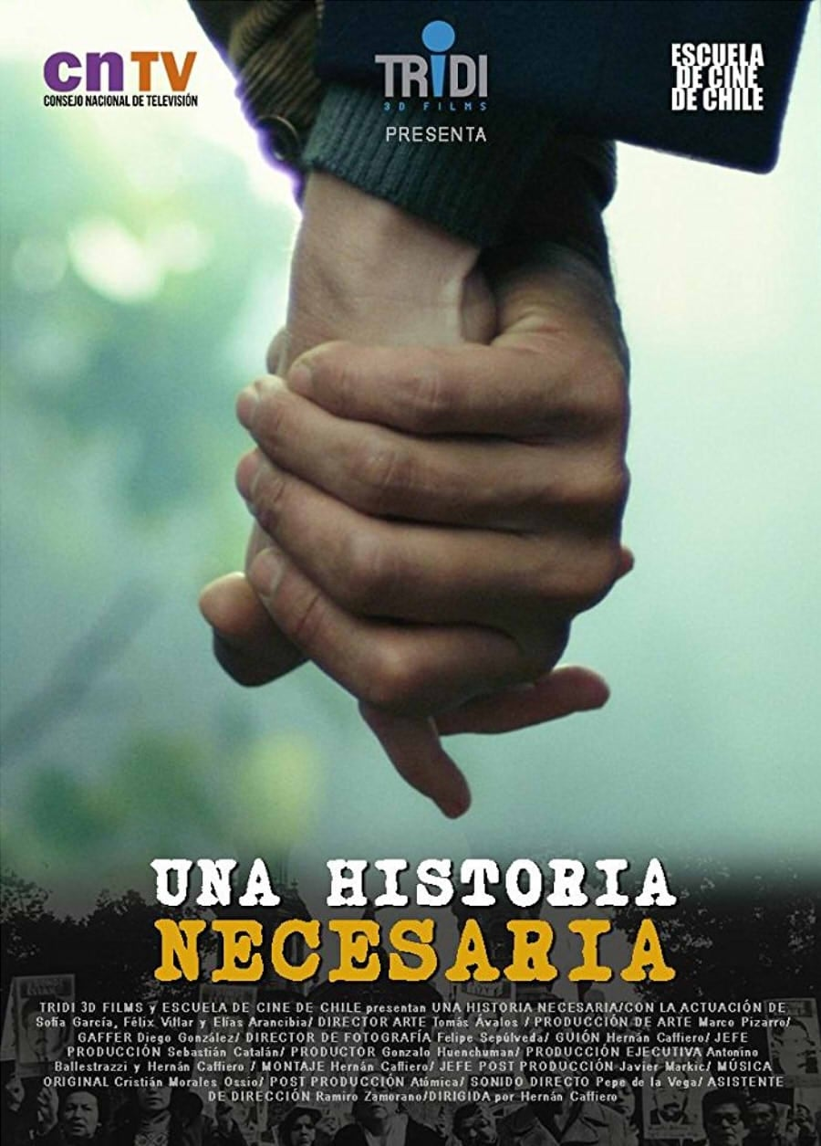 Ver A Necessary Story Online HD Español (2017)