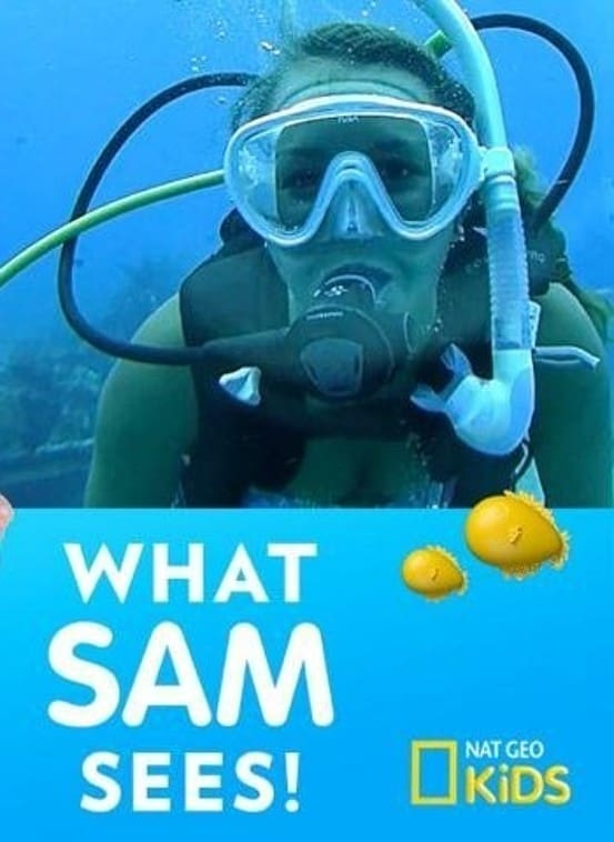 What Sam Sees (2018)