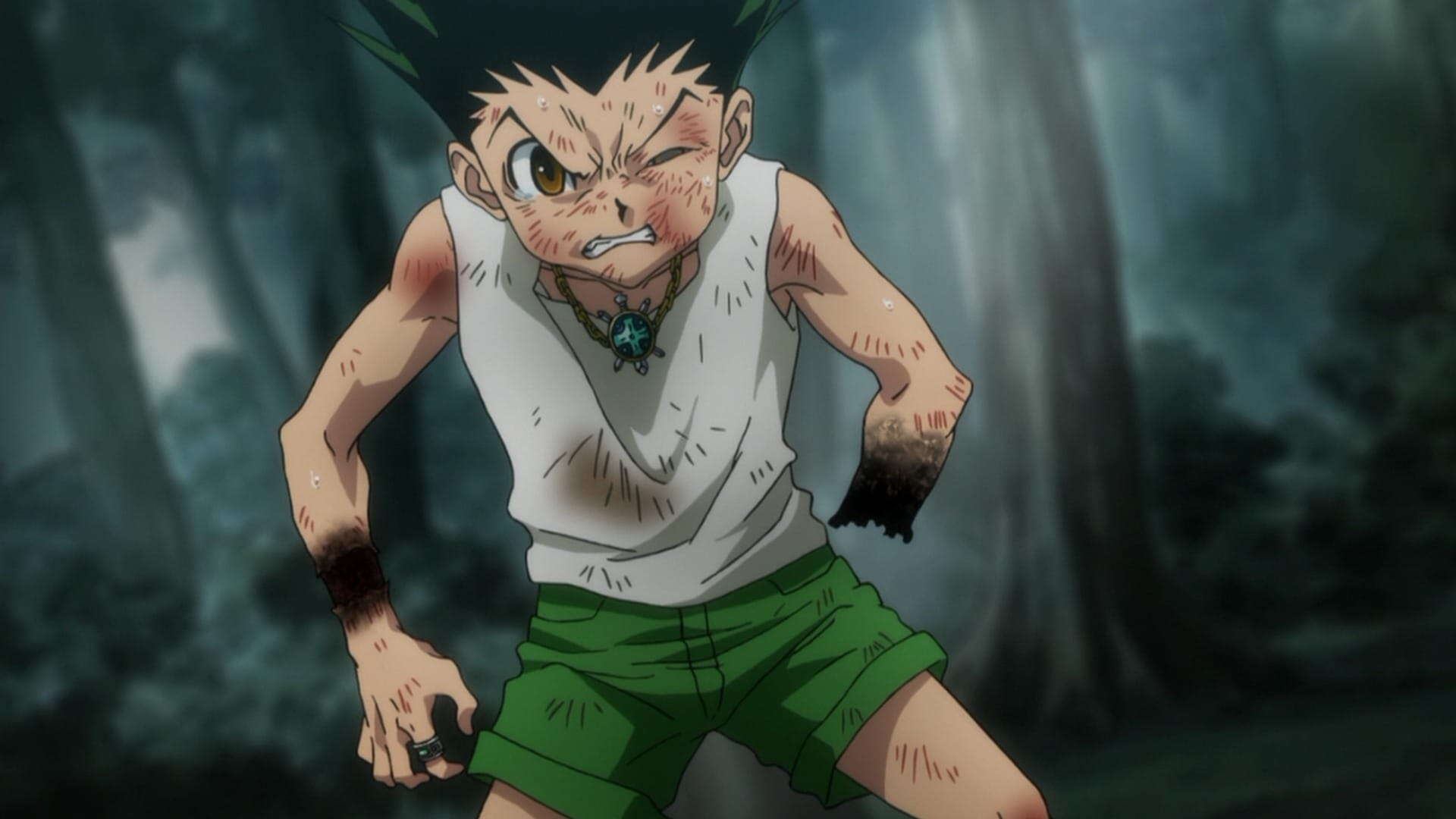 Hunter x Hunter Season 2 :Episode 12  Victor x And x Loser