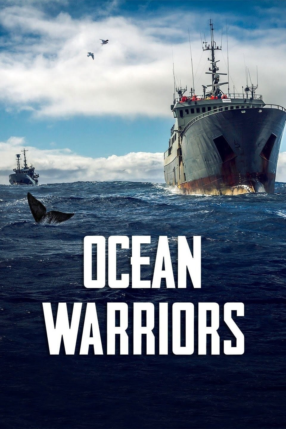 Ocean Warriors TV Shows About Fish
