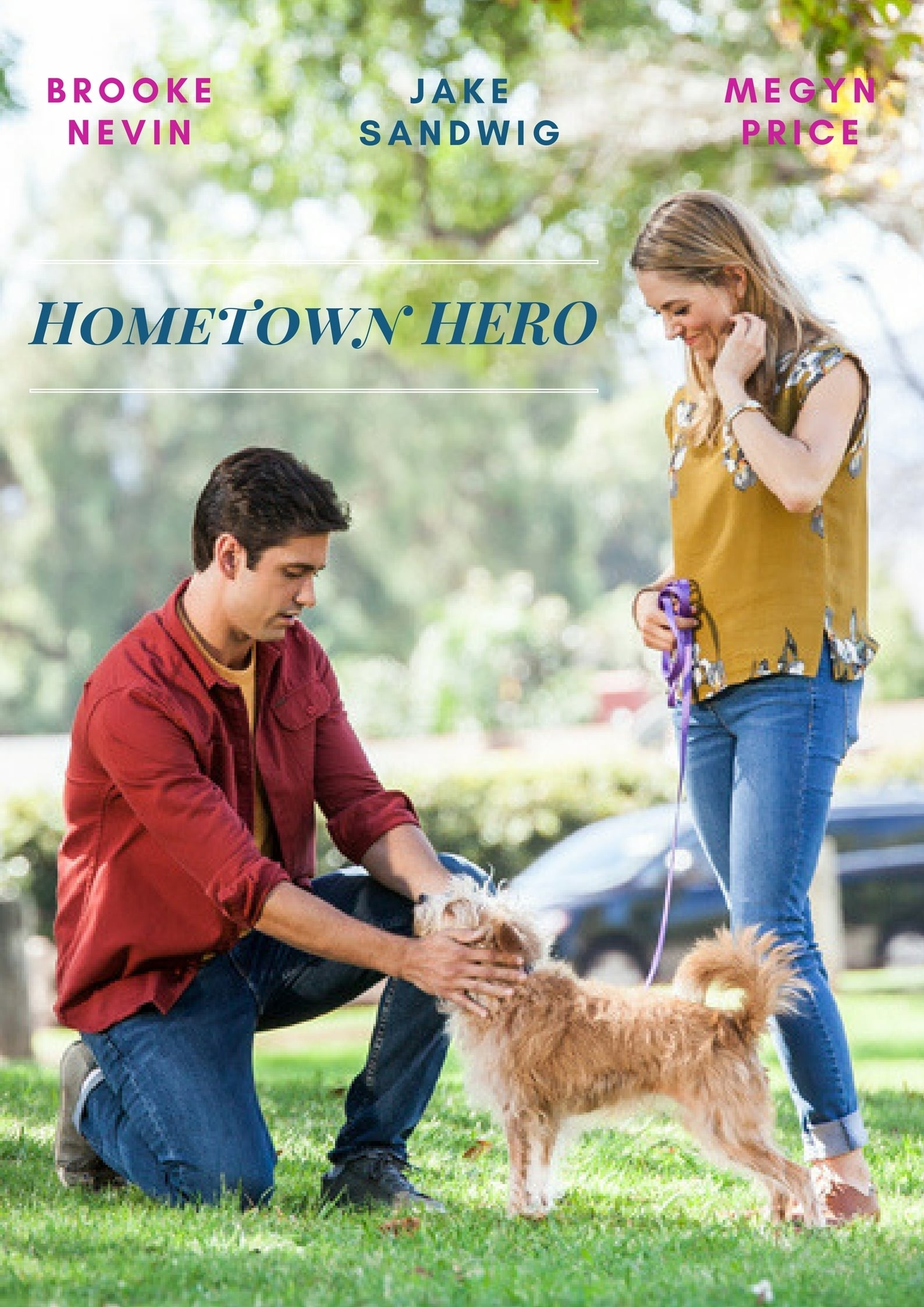 Hometown Hero (2017)
