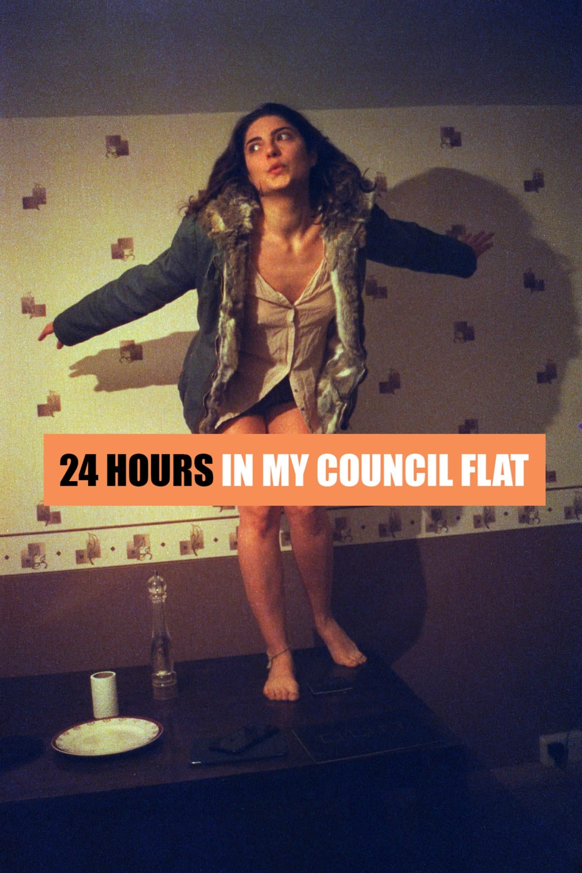 Ver 24 Hours in My Council Flat Online HD Español (2016)