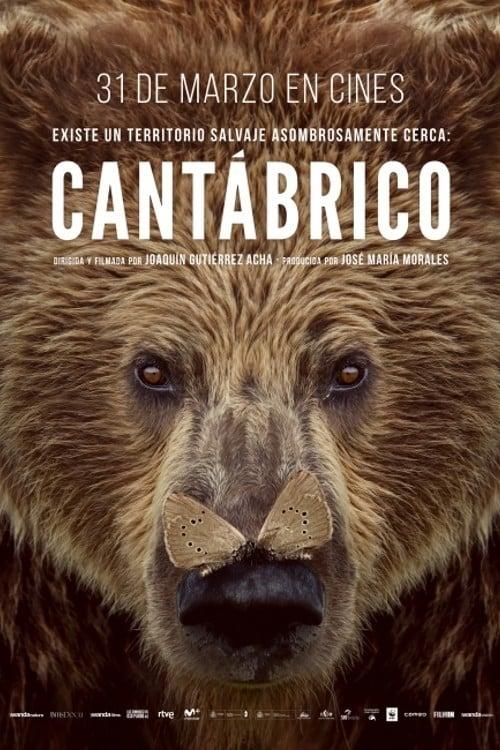 Póster Cant�brico: Los dominios del oso pardo