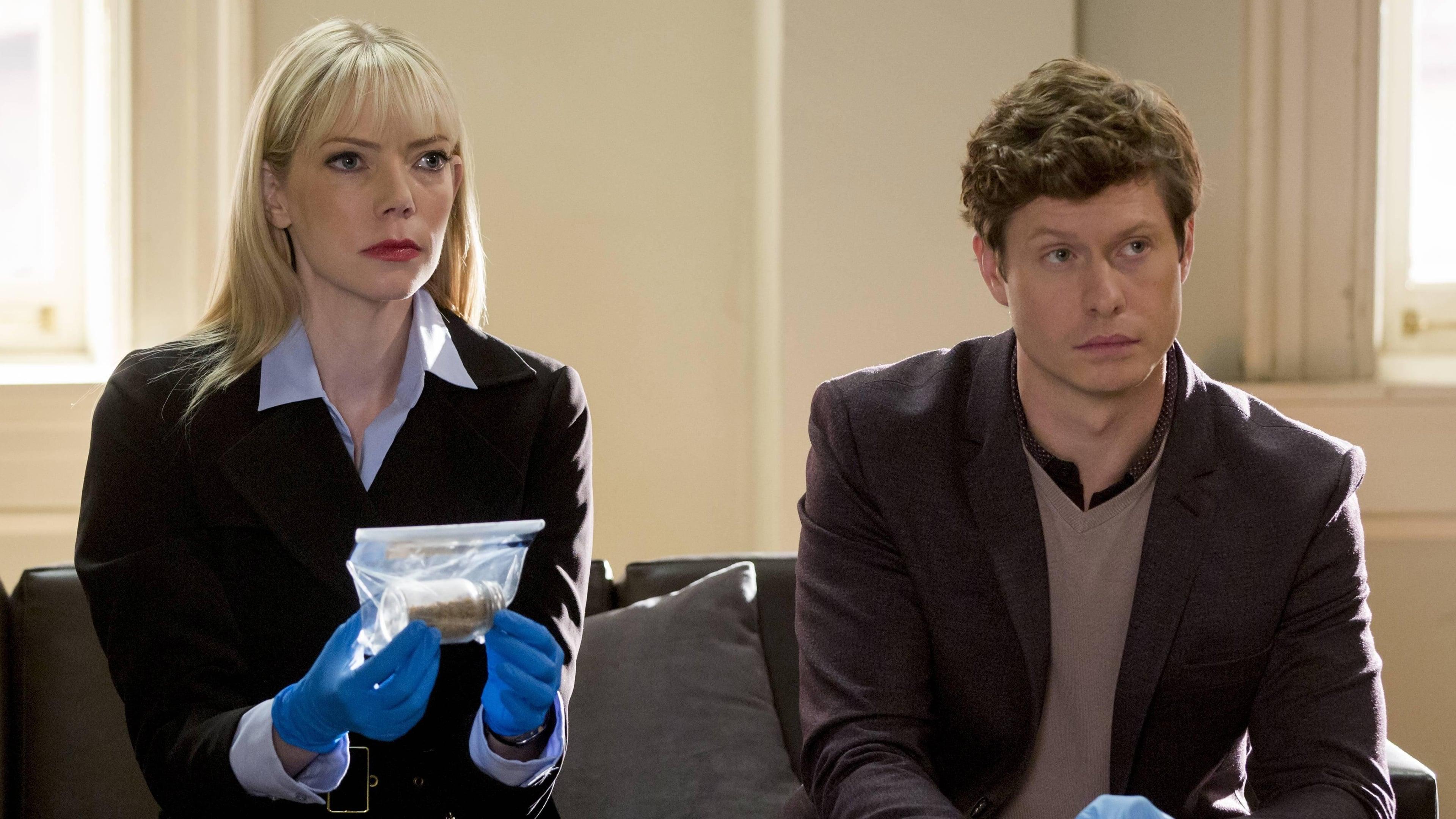 Brooklyn Nine-Nine Season 3 :Episode 9  The Swedes