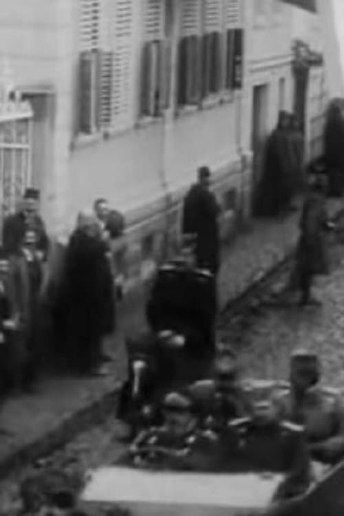 The Reception of Greek King and the heir Pavle Made by General Bojovic in Bitola