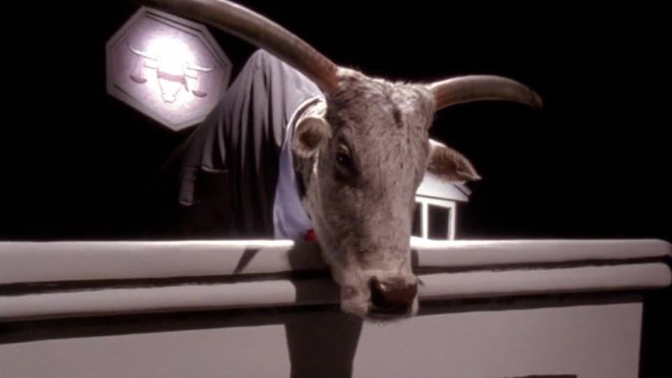 Cattle Court-Azwaad Movie Database
