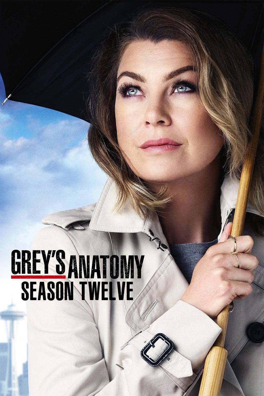 Grey's Anatomy Season 12