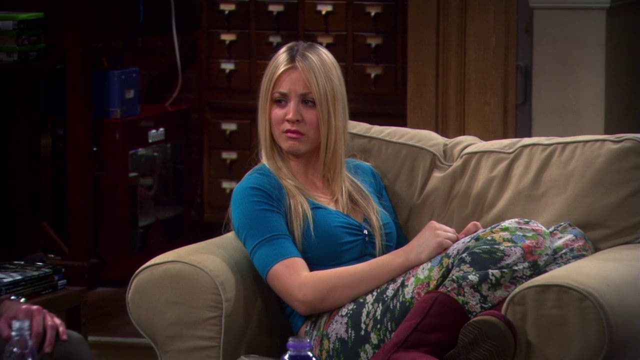The Big Bang Theory Season 4 :Episode 15  The Benefactor Factor