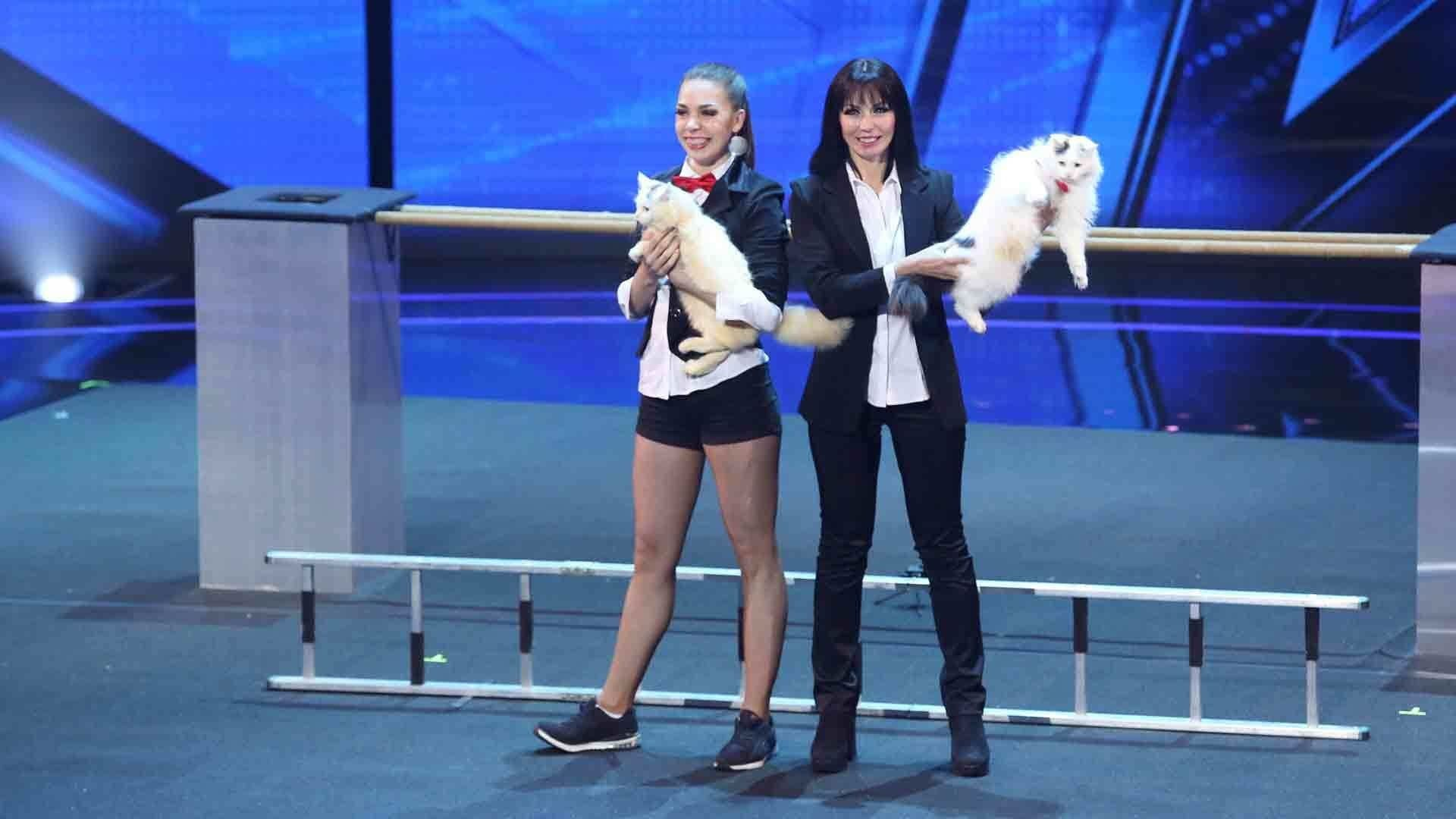America's Got Talent Season 13 :Episode 10  Judge Cuts 3
