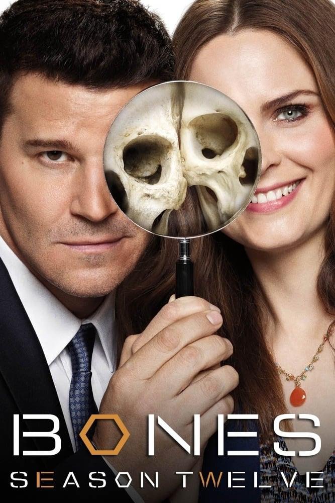 Bones Season 12