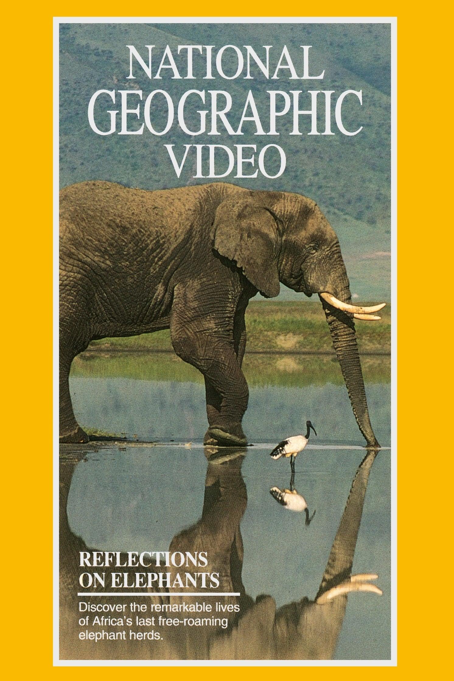 Reflections on Elephants (1970)