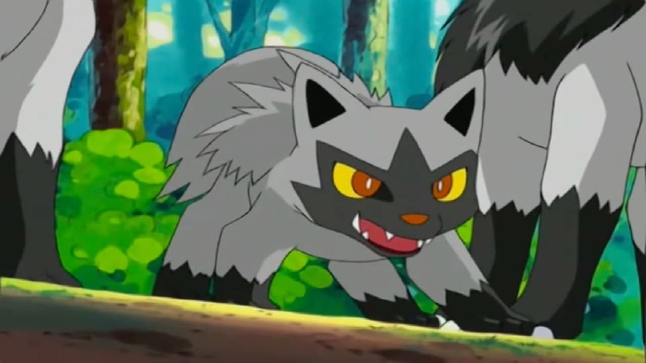 Pokémon Season 6 :Episode 11  A Bite to Remember