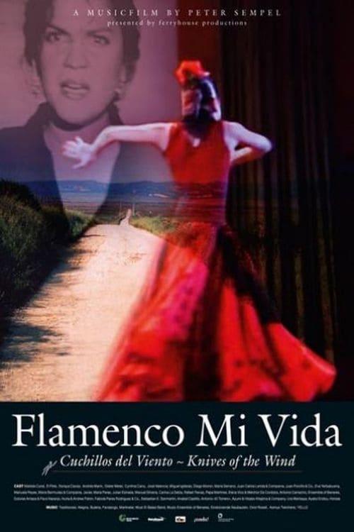 Flamenco mi vida - Knives of the wind (2008)