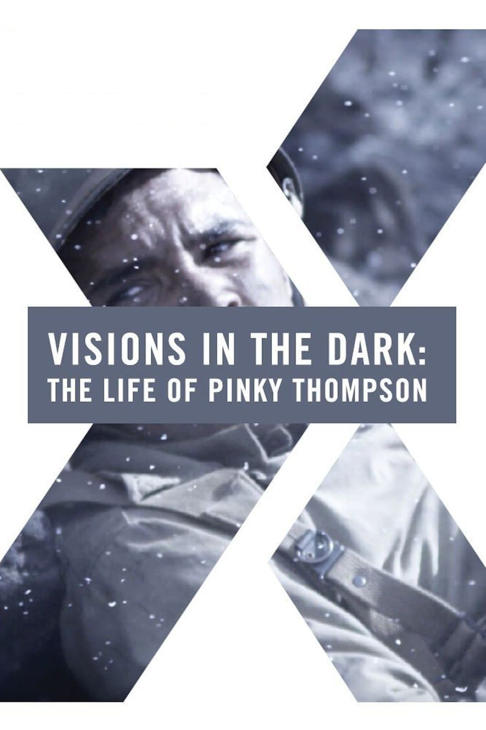 Ver Visions in the Dark: The Life of Pinky Thompson Online HD Español (2014)