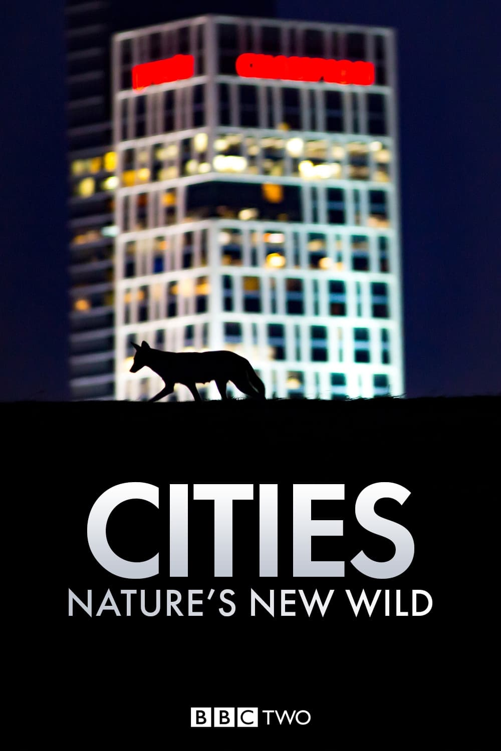 Cities: Nature's New Wild TV Shows About Wildlife