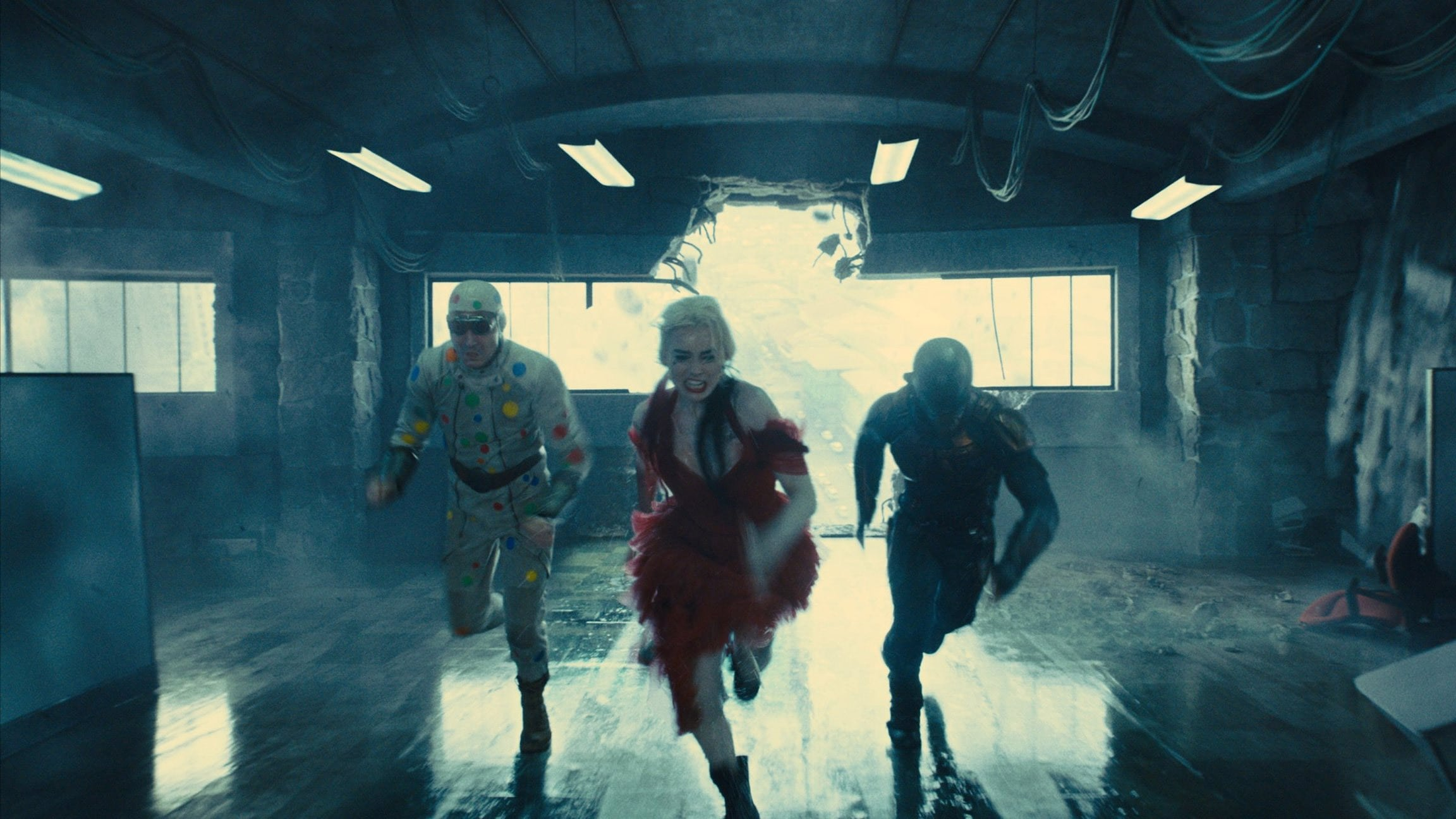 Backgrounds and walpapers The Suicide Squad