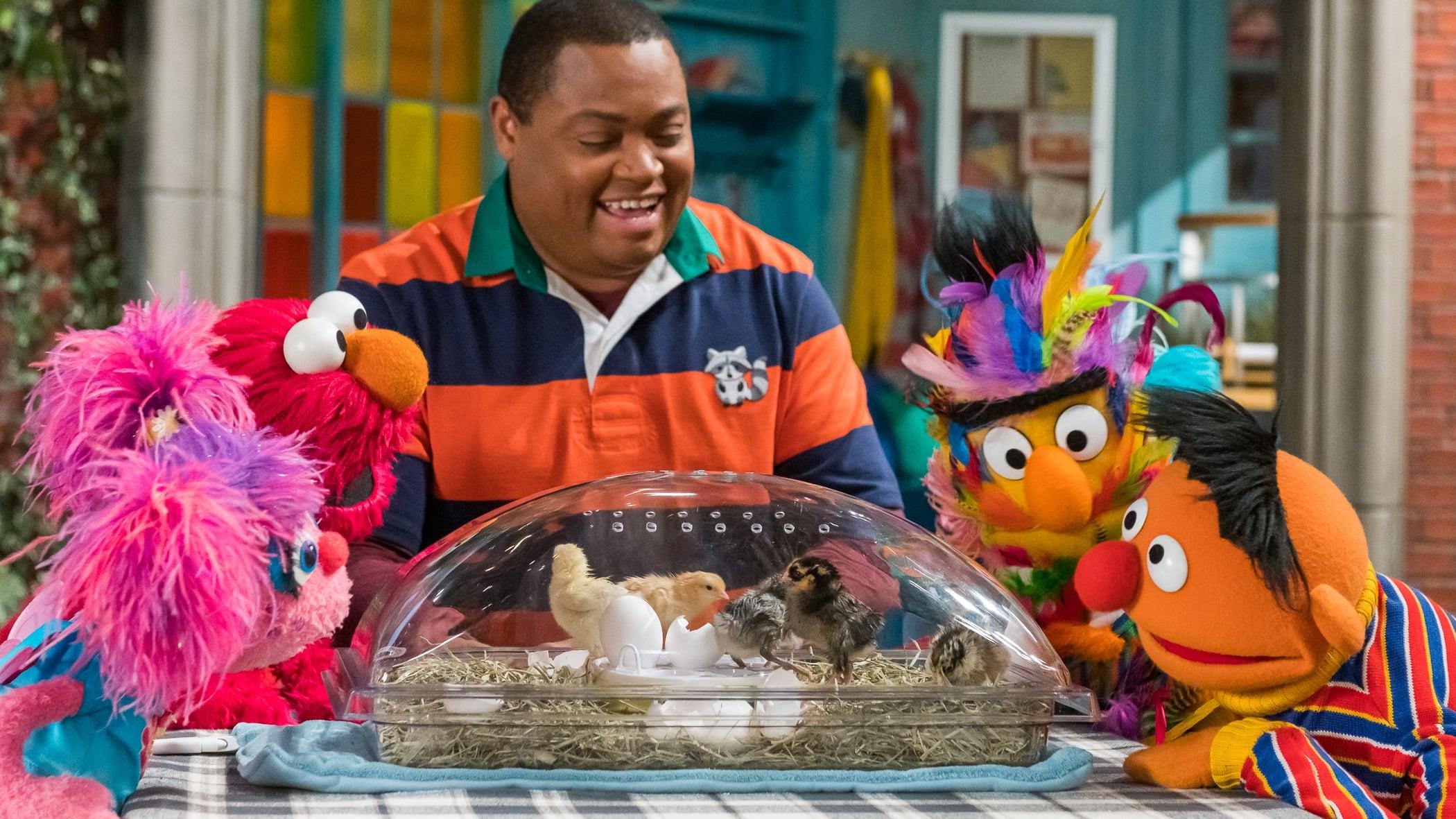 Sesame Street Season 50 :Episode 27  Welcome Baby Chicks