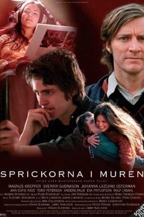 Ver Sprickorna i muren Online HD Español (2003)