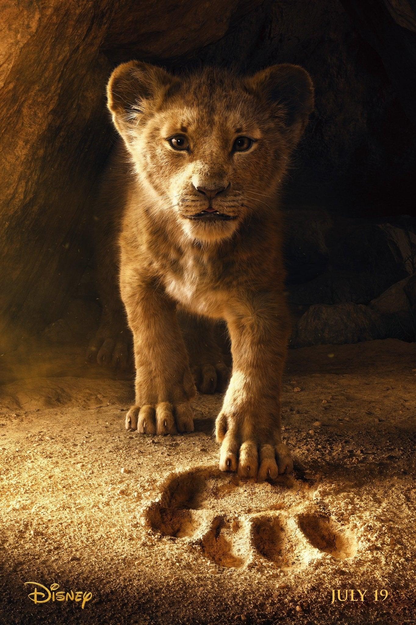 Le Roi Lion - Mator