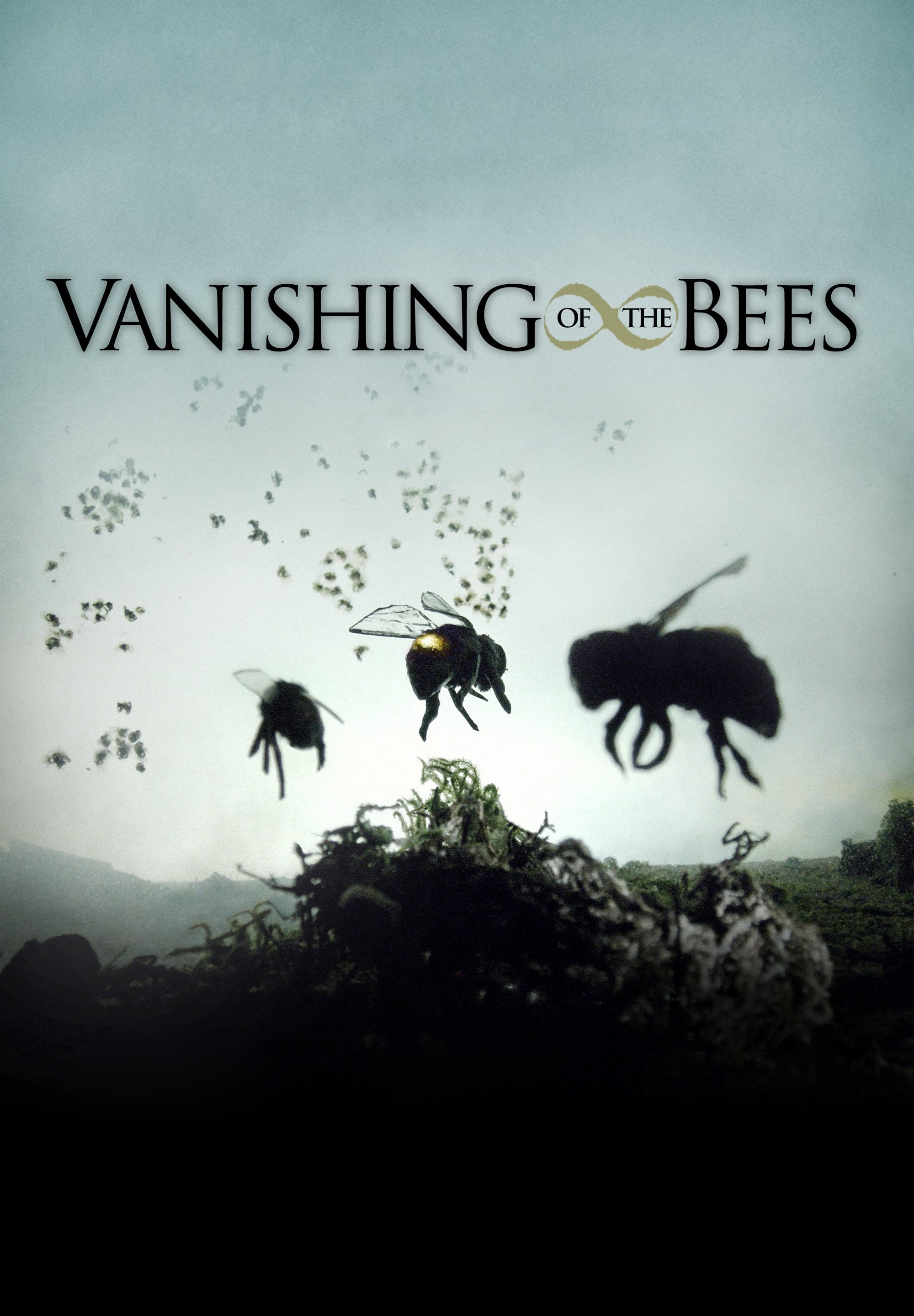Vanishing of the Bees on FREECABLE TV