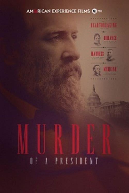 Murder of a President (2016)