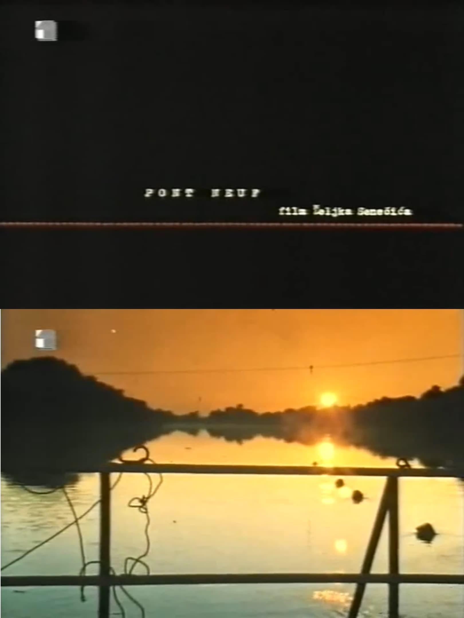Ver Pont Neuf Online HD Español (1997)