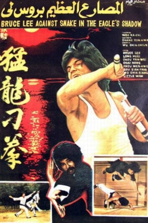 Ver Bruce Against Snake in the Eagle's Shadow Online HD Español (1979)