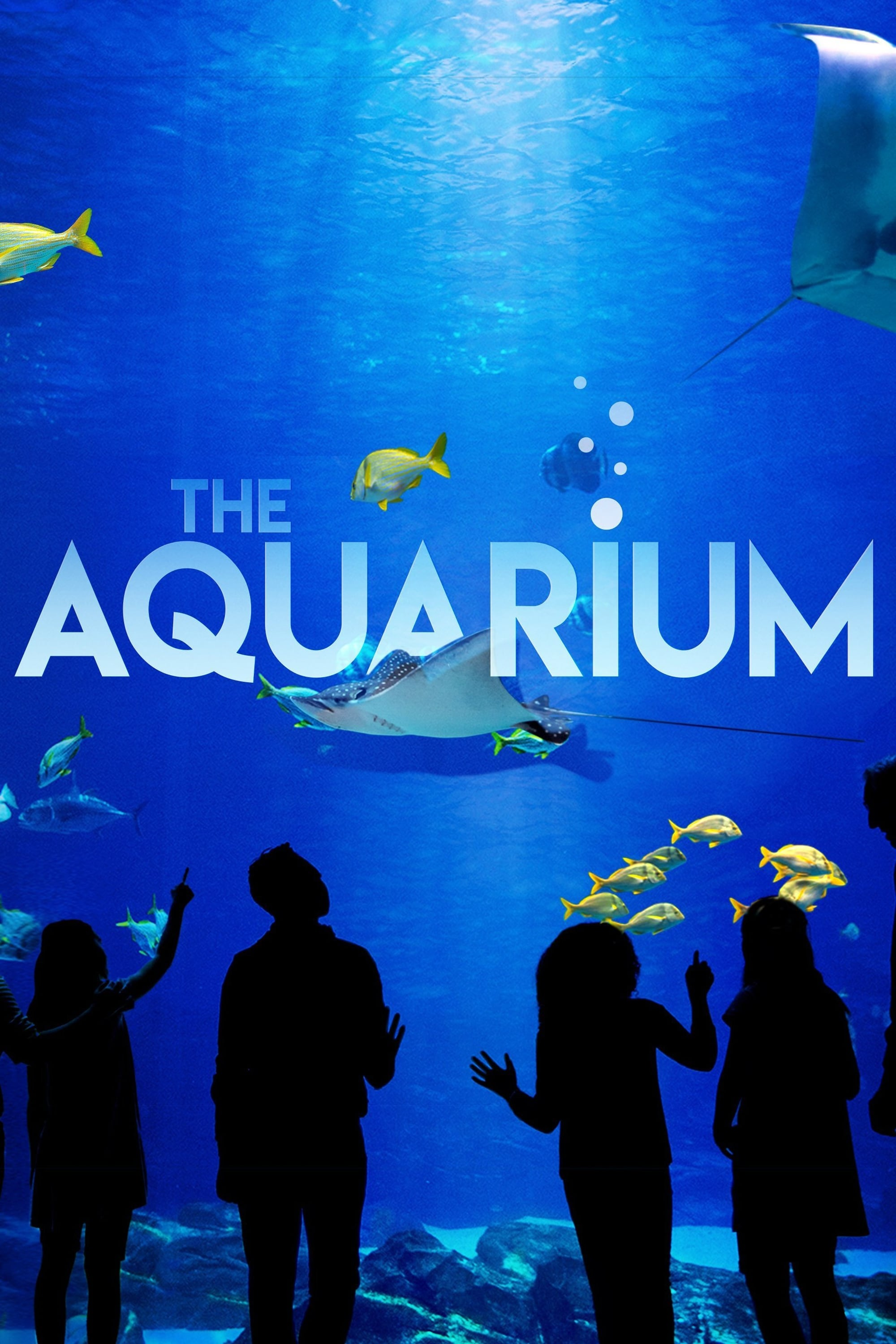 The Aquarium (2019)