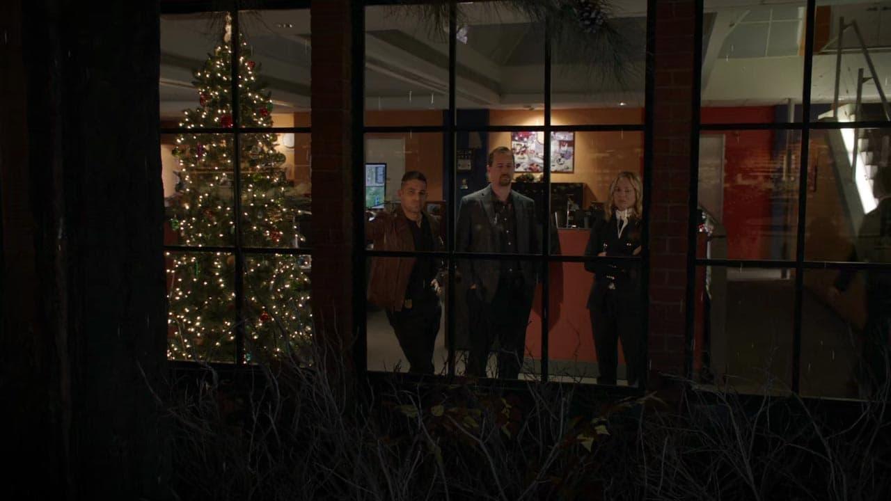 NCIS Season 17 :Episode 10  The North Pole