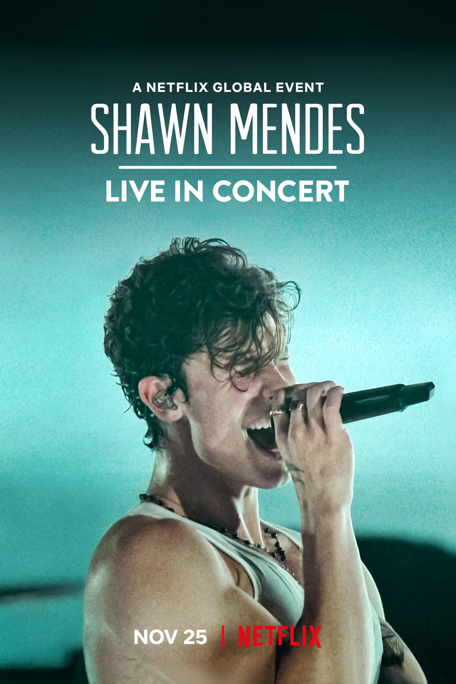 Shawn Mendes: Live in Concert Legendado