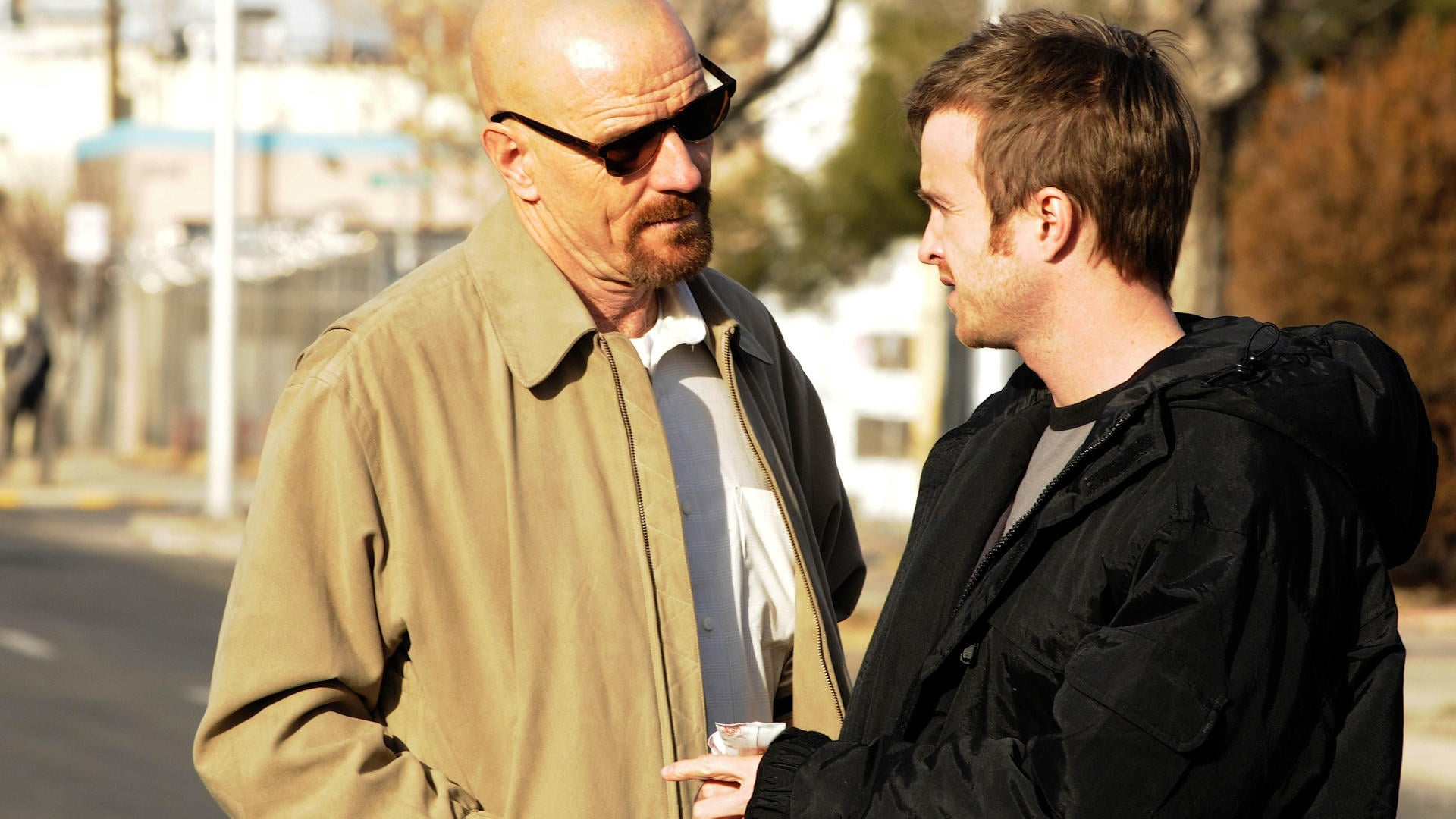 Breaking Bad Season 3 :Episode 12  Half Measures