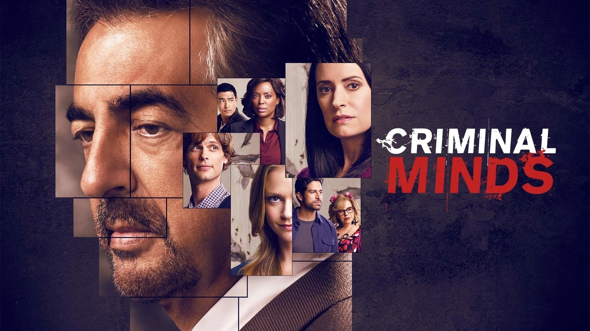 Criminal Minds - Season 9 (1970)