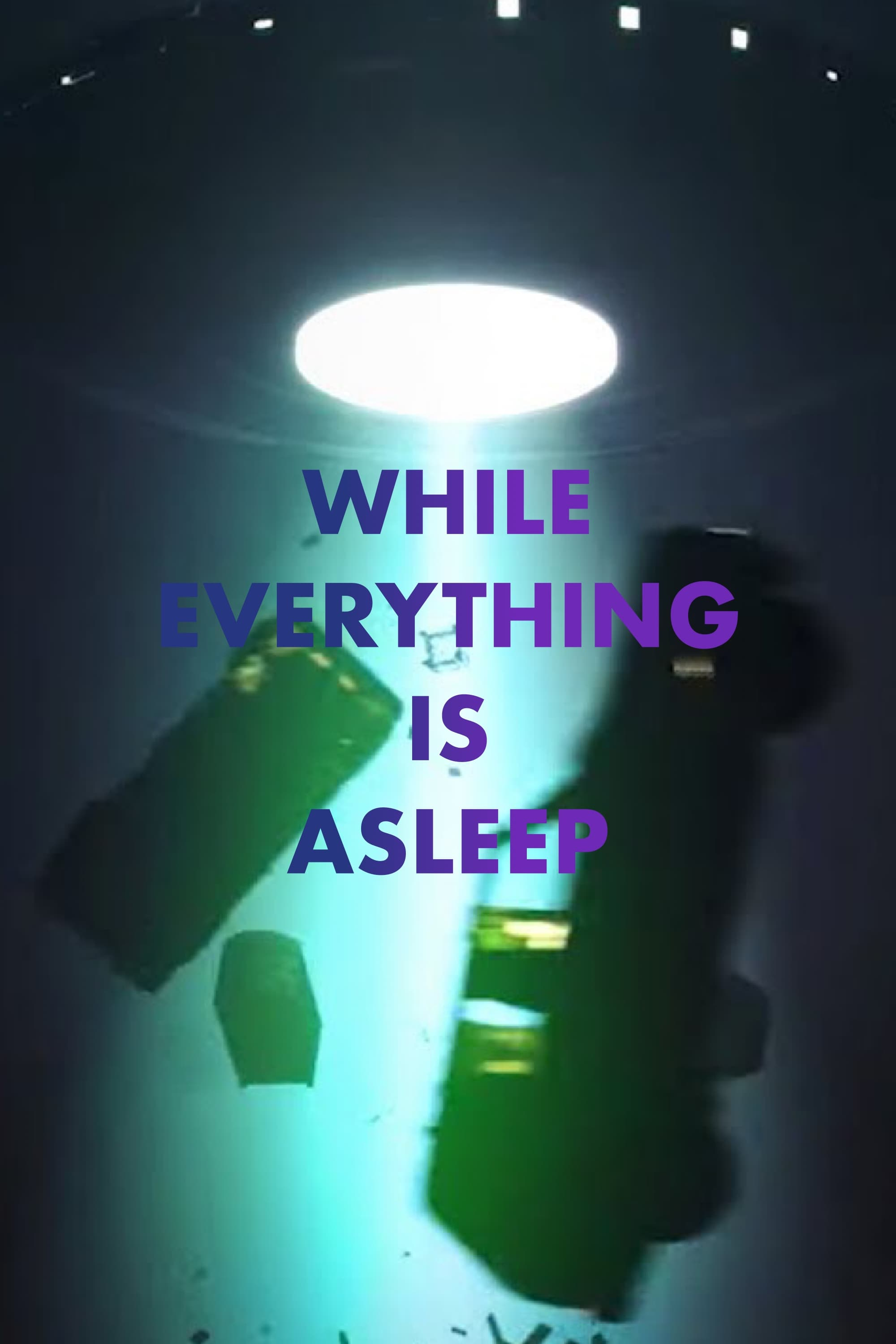While Everything is Asleep (2020)