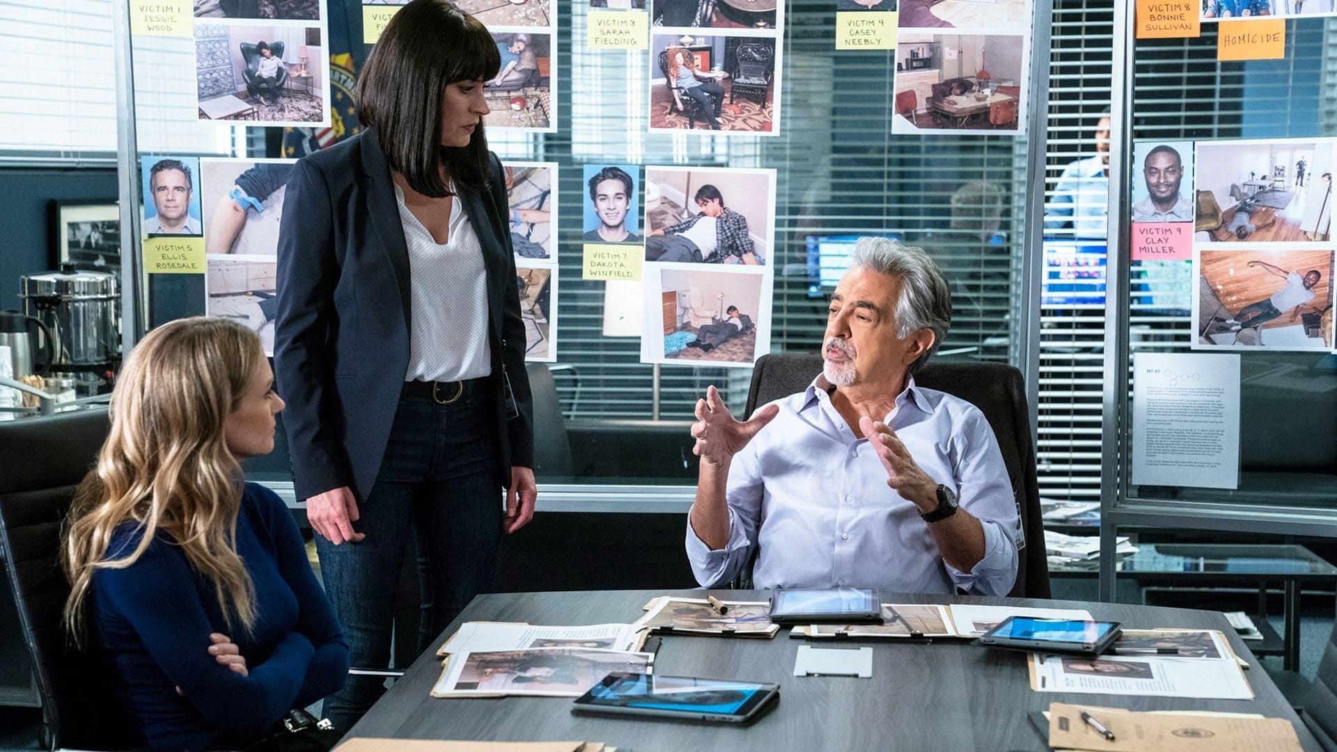 Criminal Minds Season 14 :Episode 9  Broken Wing