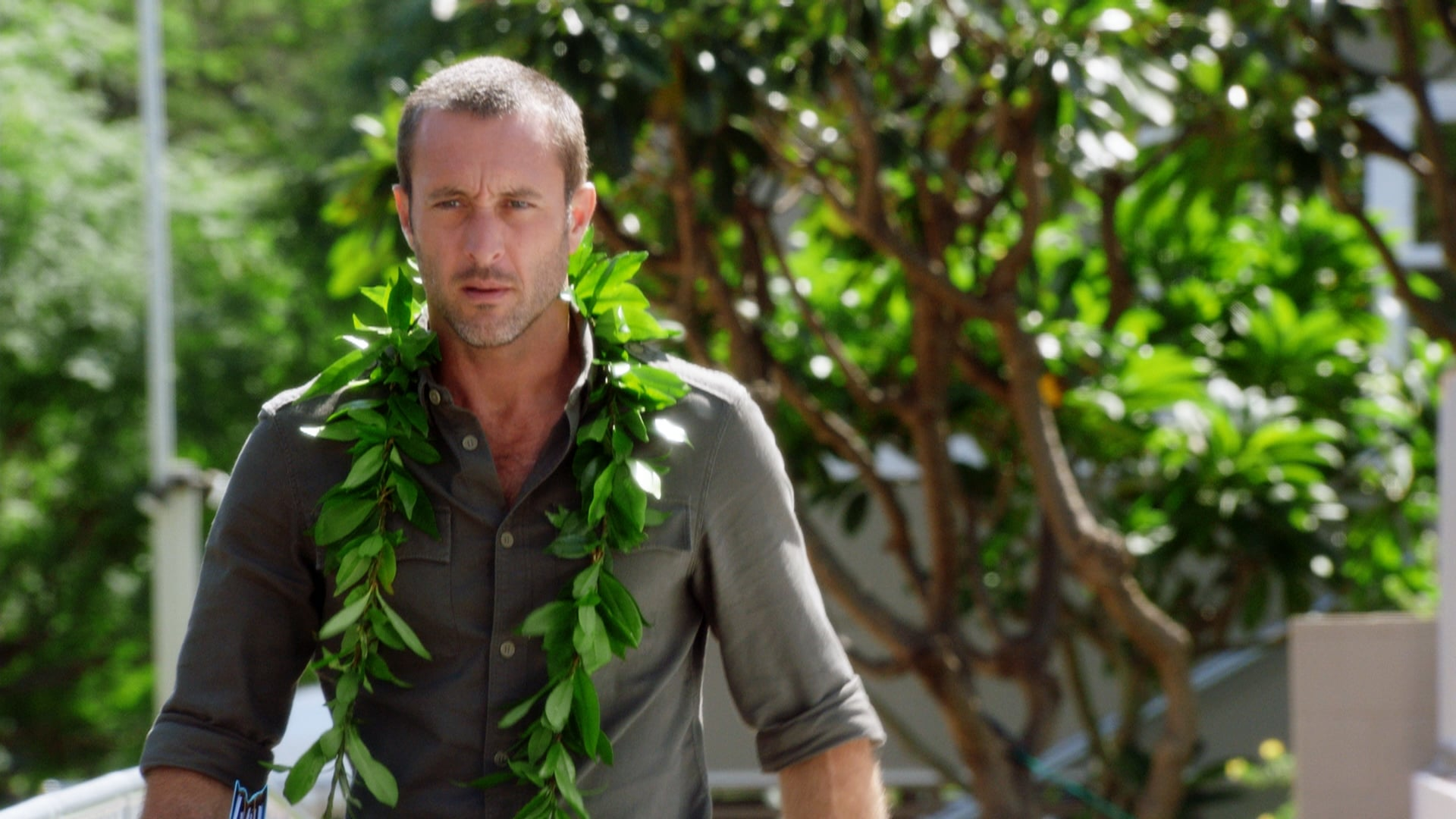 Hawaii Five-0 Season 8 :Episode 19  Aohe mea make i ka hewa; make no i ka mihi ole (No One Has Ever Died For the Mistakes He Has Made; Only Because He Didn't Repent)