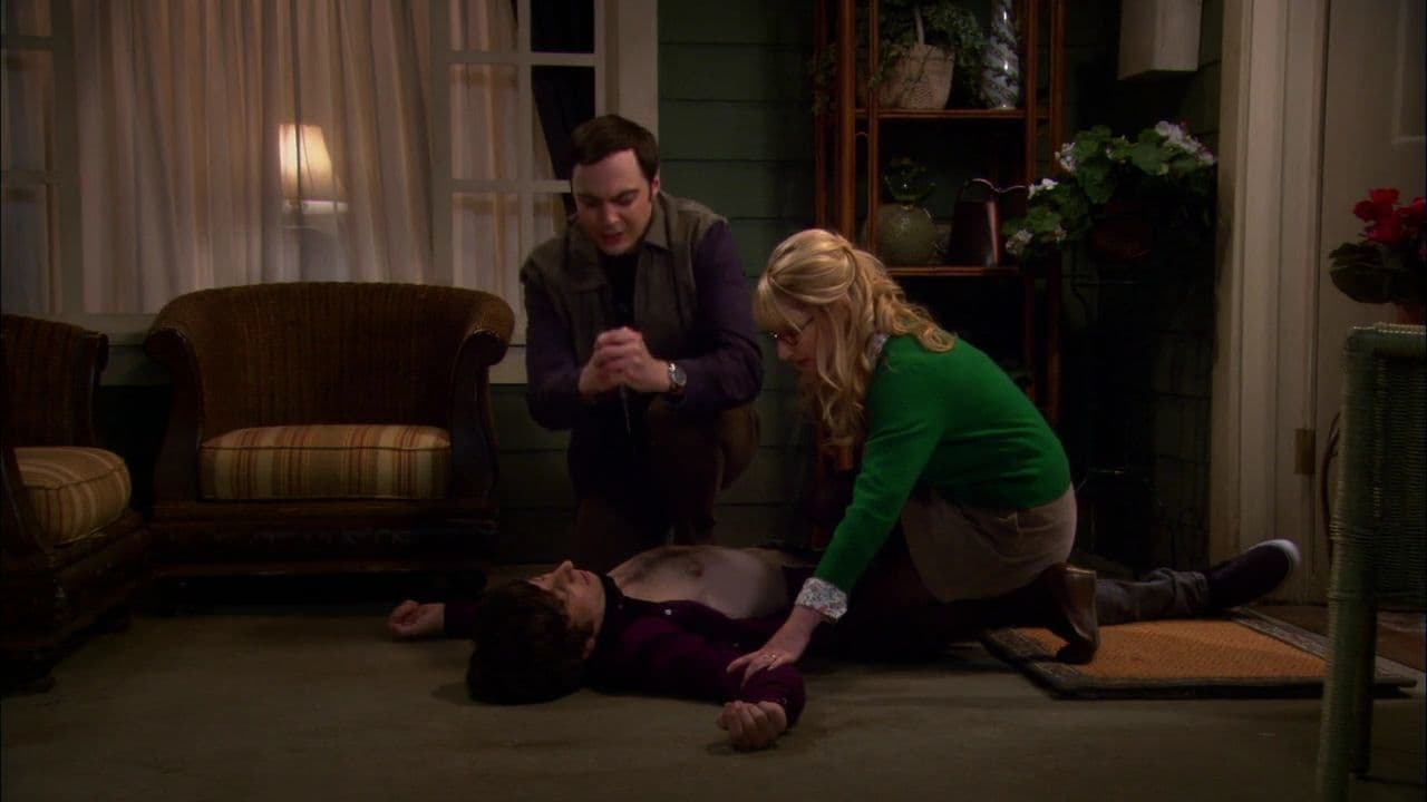 The Big Bang Theory Season 5 :Episode 7  The Good Guy Fluctuation