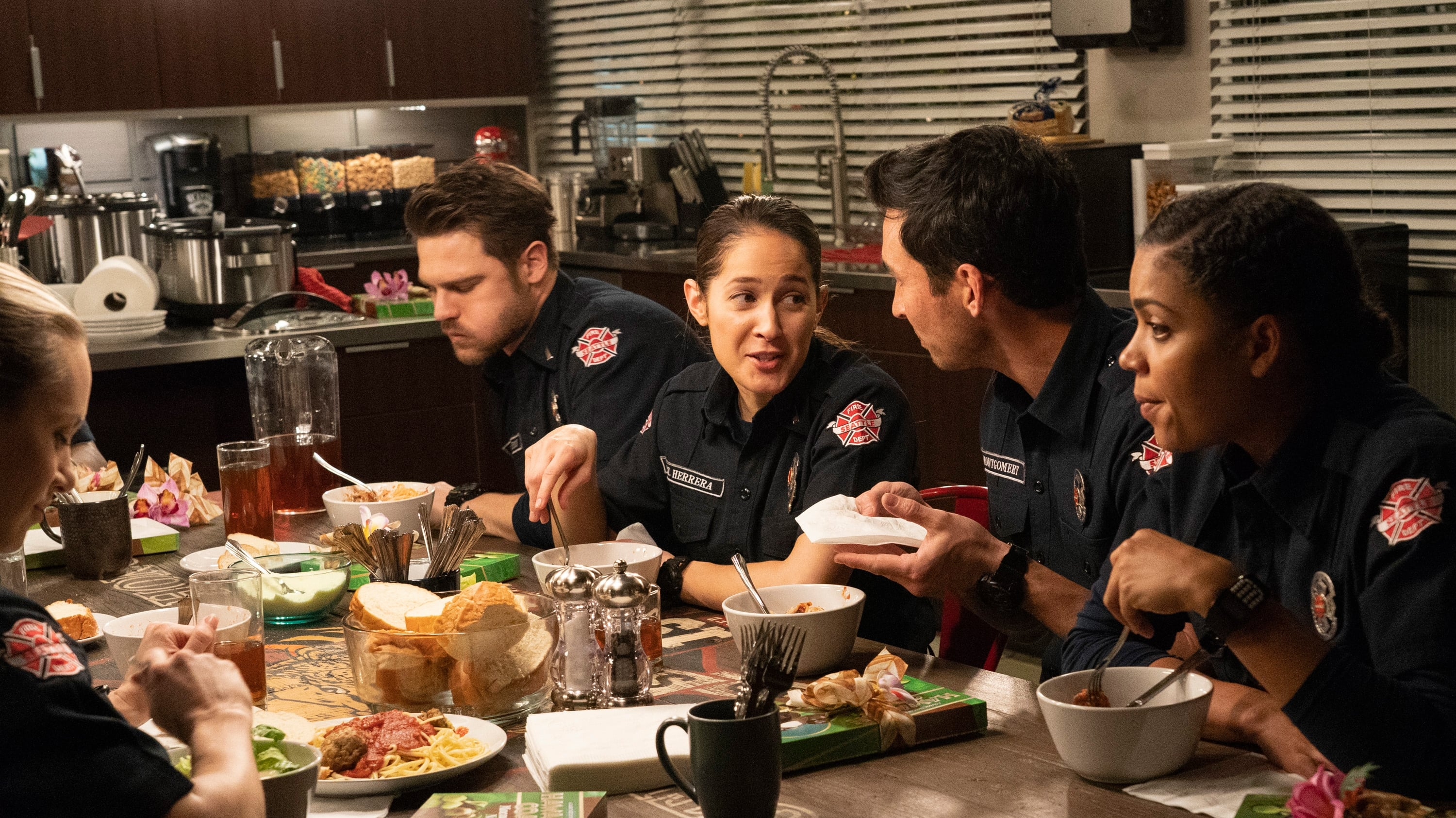 Station 19 Season 2 :Episode 13  The Dark Night