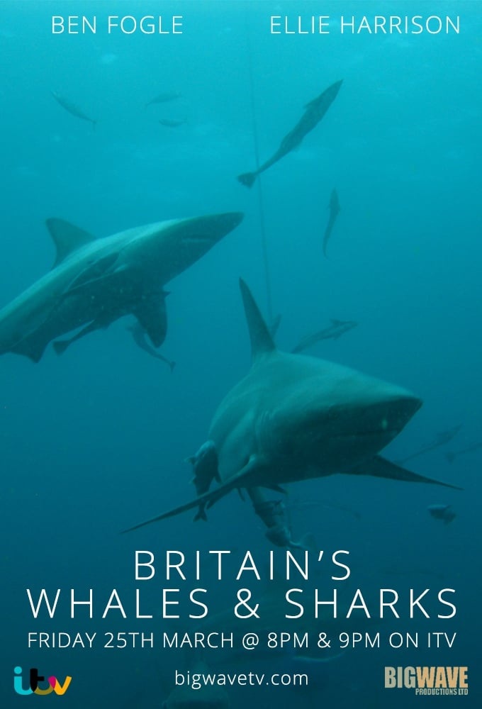 Britain's Whales and Sharks (2016)