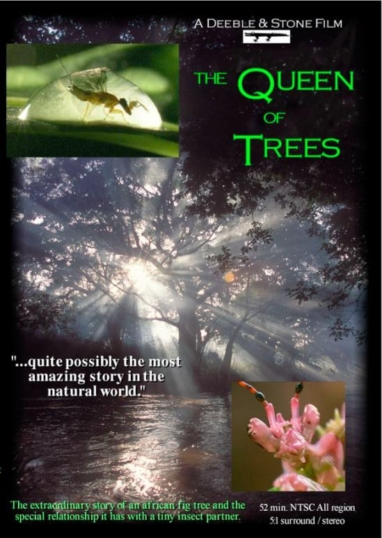 The Queen of Trees (2005)