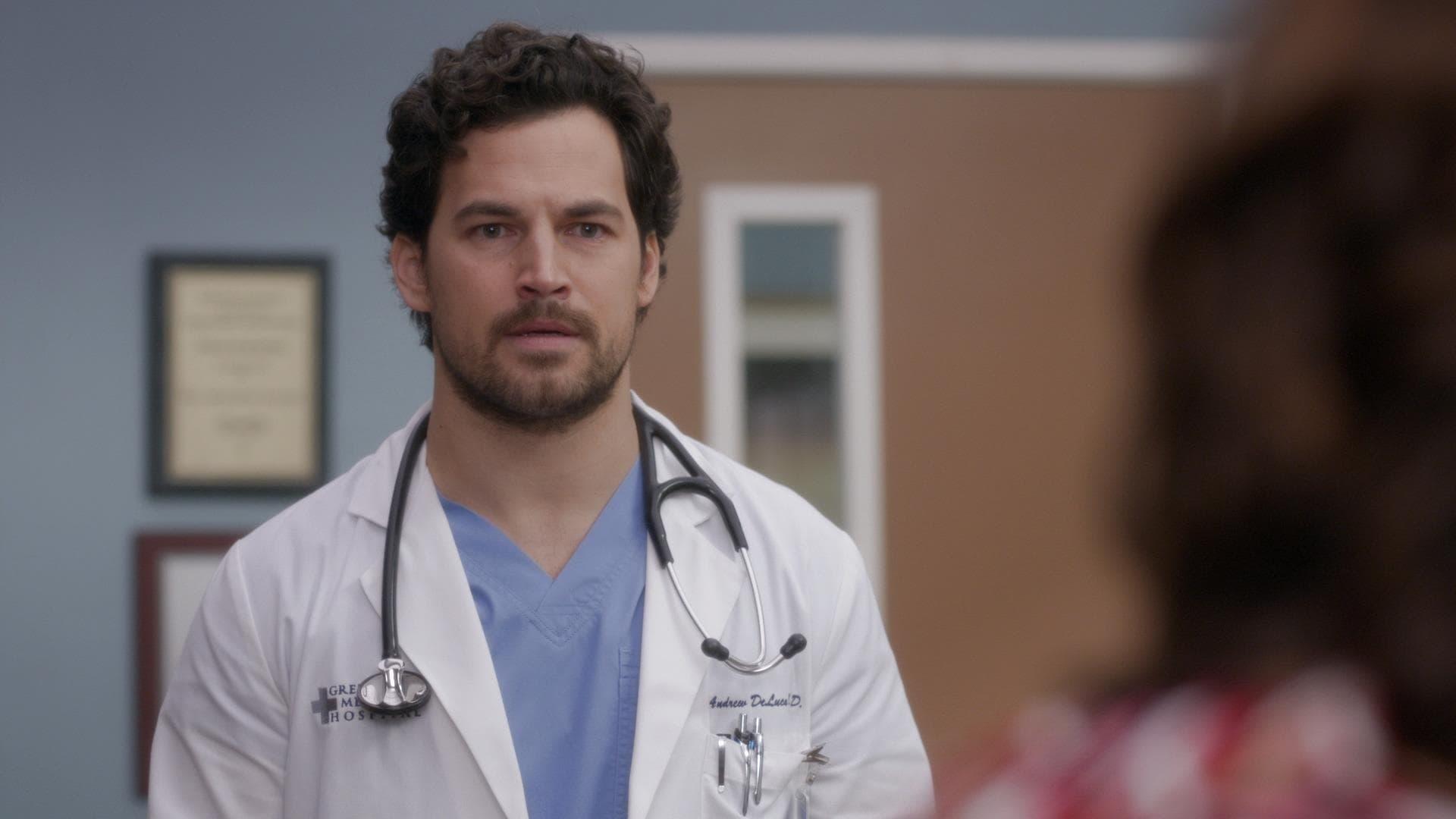 Grey's Anatomy - Season 16 Episode 14 : A Diagnosis (1970)