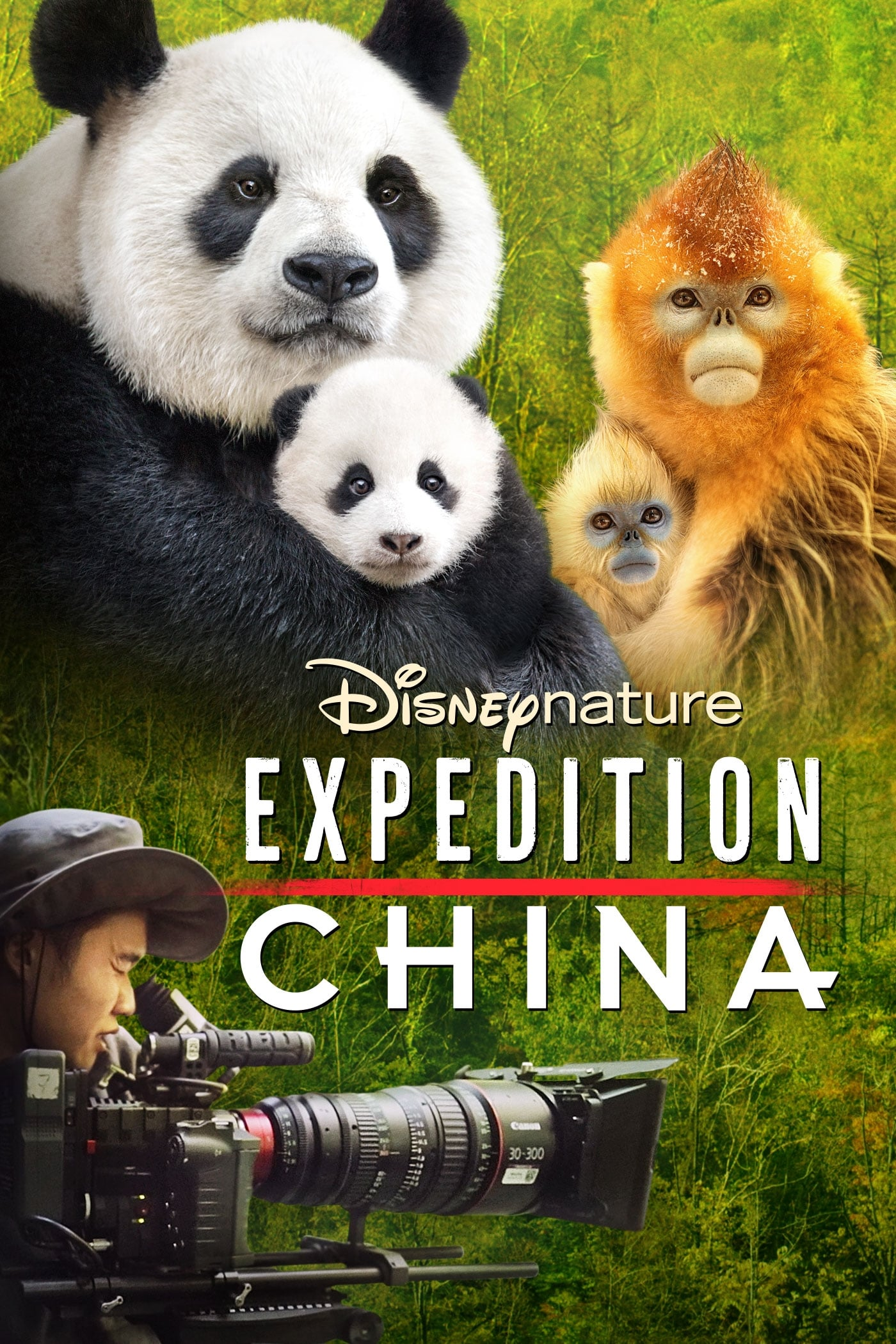 watch Expedition China 2017 Stream online free