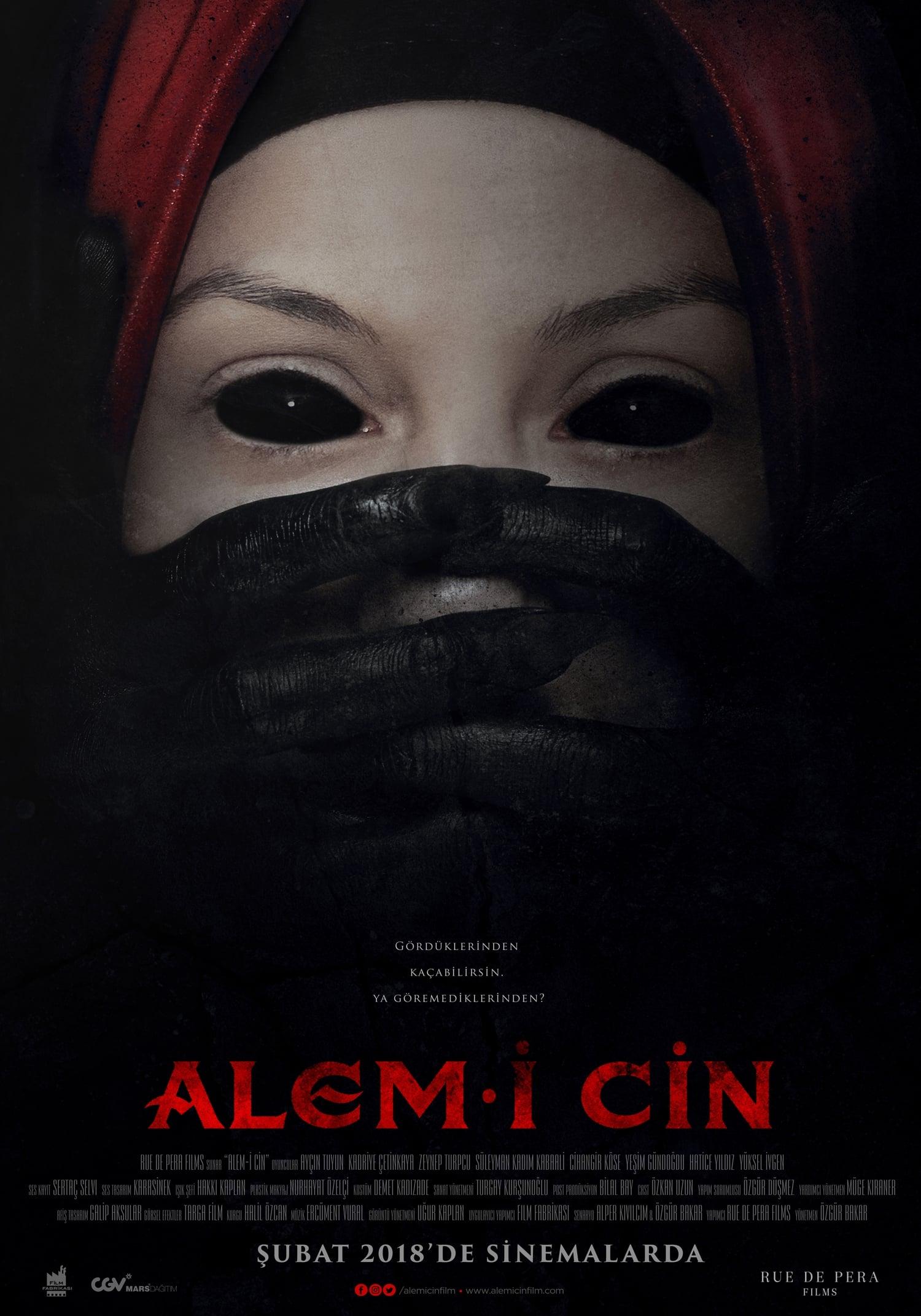 Ver Alem-i Cin Online HD Español (2018)