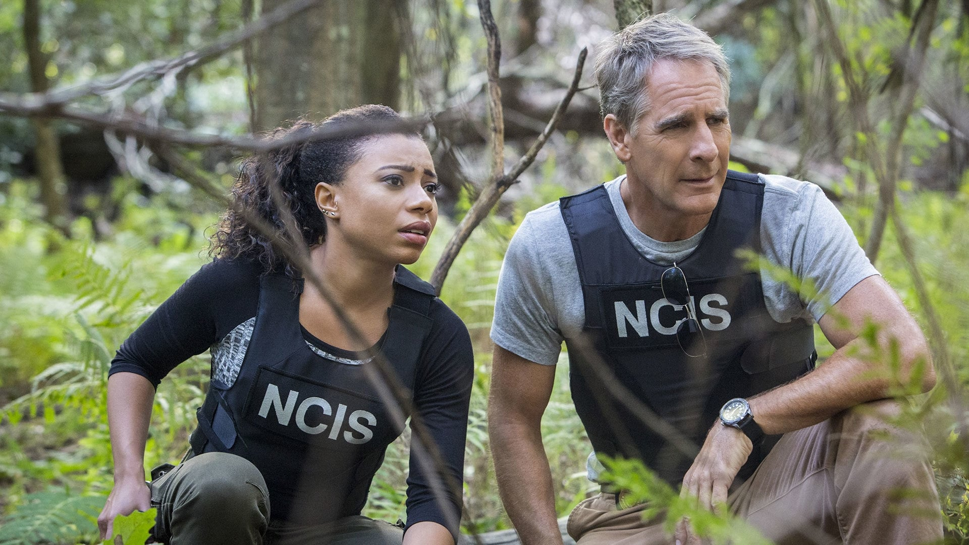 NCIS: New Orleans Season 2 :Episode 8  Confluence